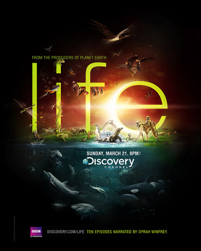 Discovery Channel – Life